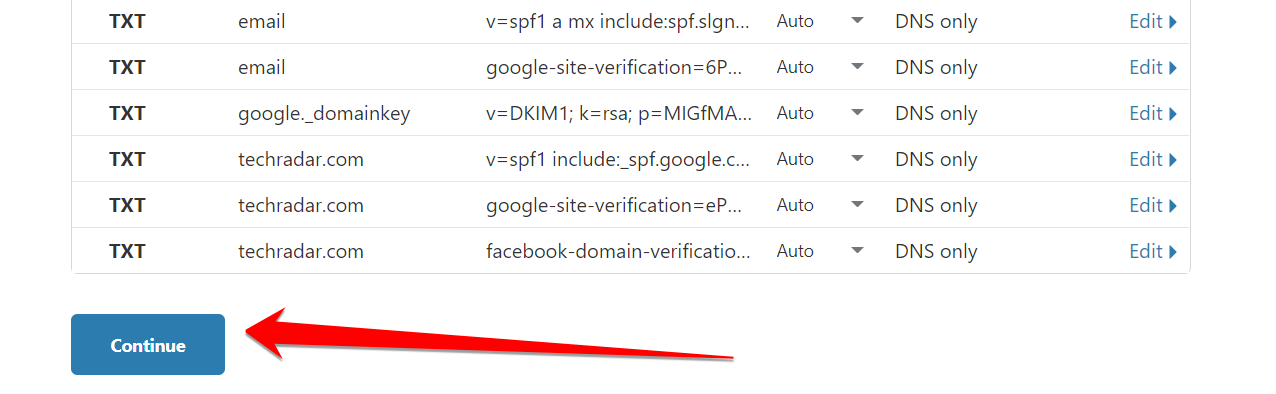 Click Continue In Cloudflare That Show All DNS Records