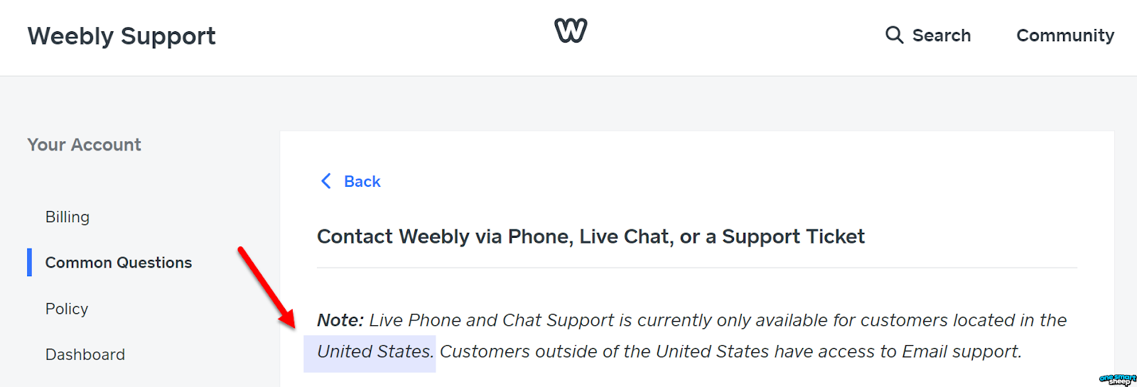 Phone Live Chat Support