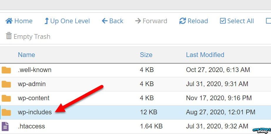 Wp Includes Folder In Cpanel Location
